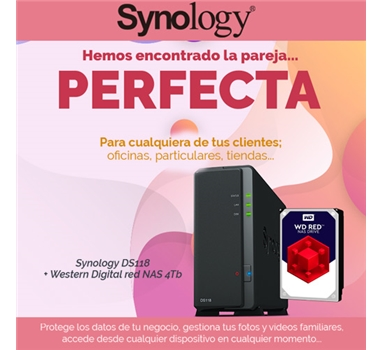 Bundle Synology - Nas DS118 + disco duro Red nas WD40EFRX