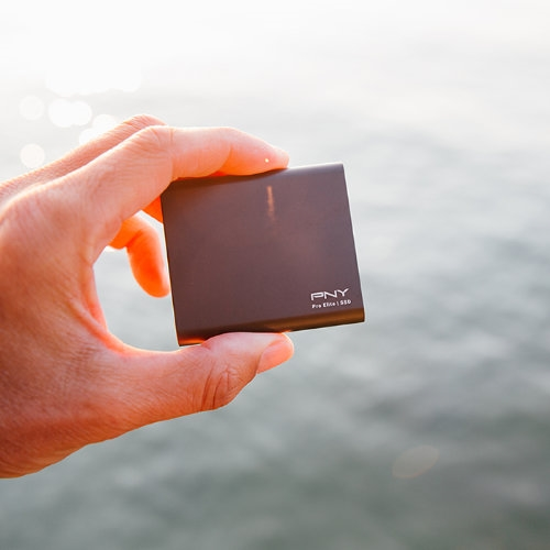 PNY - Disco Duro SSD Externo Pro Elite - USB Type-C -  500GB - 875Mb/s - Color plata